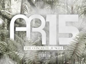 AR15 COVER 2