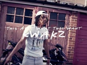 Kwakz This Ain't What They Want Artwork